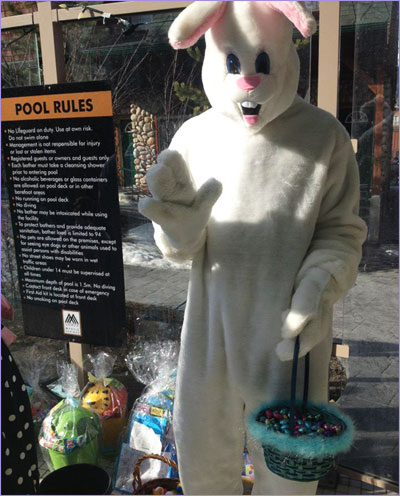 Easter Bunny